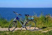 Fahrrad von Ute Bauduin