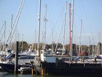 Hafen von Ute Bauduin