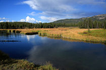 Edited-yellowstone-river
