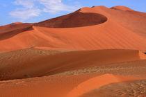 Desert Curves von Aidan Moran