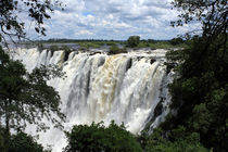 Victoria Falls View  von Aidan Moran