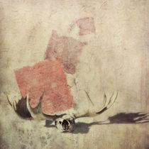 Shadow by Priska  Wettstein