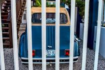 A Tropical Car von Srdjan Petrovic