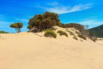 Sardinia - Piscinas dune von Antonio Scarpi