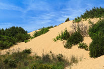 Piscinas dunes, Sardinia, Italy von Antonio Scarpi