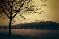 Bratislava Schloss by Martin Dzurjanik