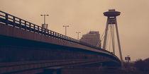Brücke II. von Martin Dzurjanik