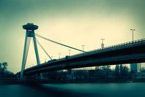Brücke von Martin Dzurjanik