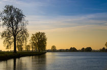Trees along the Maas River von Engeline Tan
