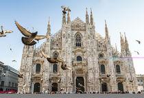 Duomo of Milan by Pier Giorgio  Mariani