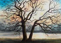 Sonnenuntergang an der Mulde by Barbara Kaiser