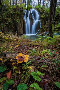Wasserfall im Plitvicer Seen Nationalpark von Lukas Kirchgasser