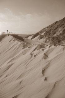 Dünenlandschaft by Ute Bauduin