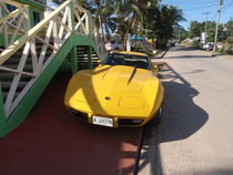 Yellow Corvette by Malcolm Snook