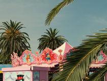 Fun fair and palm trees by lsdpix