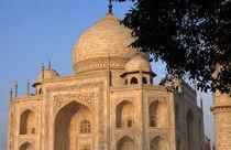 Taj Mahal In Evening Light by Aidan Moran