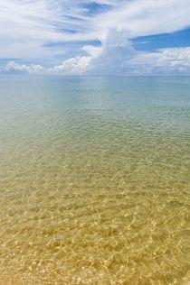 Sonne, Strand und Meer: ohne alles by Tobias Koch