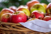 Apples von Lana Malamatidi