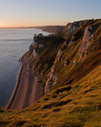 Branscombe Cliffs in Devon by Pete Hemington