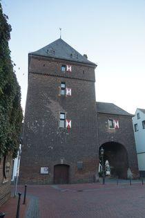 Schelmenturm 999 von leddermann