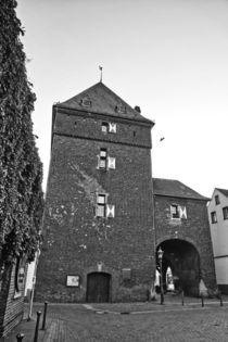 Schelmenturm 996 von leddermann