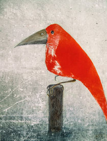 'Der Rote Vogel - the red bird' von Chris Berger
