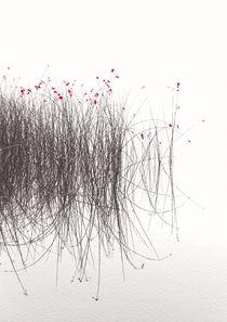 rotblühende 1 von Jens Hennig