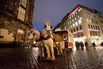 Dresden-horse-and-cart
