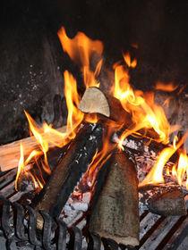 Kaminfeuer von farbart