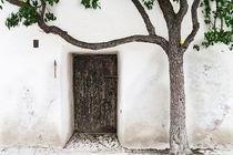 Paradise Exit von Mario Fichtner