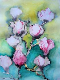 Magnolien by Gerhard Stolpa