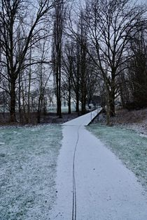 Spuren im Schnee von leddermann