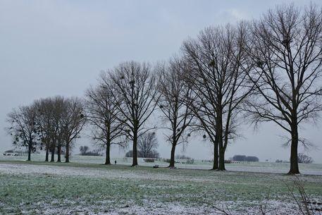 Winterlandschaft-0001-cut-6000b