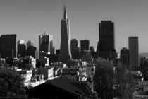 San Francisco Skyline, California, USA von Aidan Moran