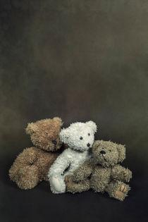Teddy-0012