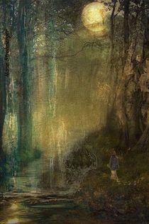 Der Wanderer von Marie Luise Strohmenger