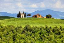 Toscana0513-1191