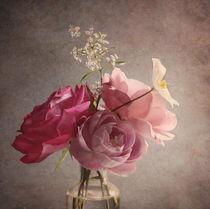 Rosenträumerei von Franziska Rullert