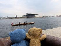 Blick auf Konzerthaus von Kopenhagen von Olga Sander