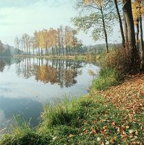 Mirror of the Autumn Gold von Evgeny Govorov