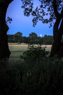 Mond über dem Feld by gilidhor