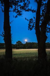 Mond über dem Feld von gilidhor