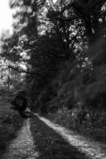 Bewegung im Wald von gilidhor