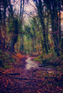 Wetpath-hdr