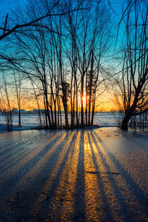 Sunset on frozen pond von Giordano Aita