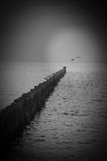Meer by Ute Bauduin