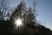 Sonnenstrahlen by Ute Bauduin