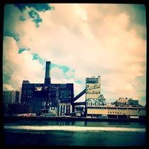 N.Y. Sugar von Isabella Morrien