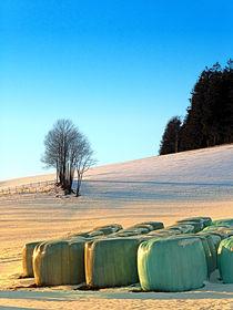 Heuballen im Winter Wunderland | Landschaftsfotografie by Patrick Jobst