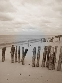 Strand by Ute Bauduin